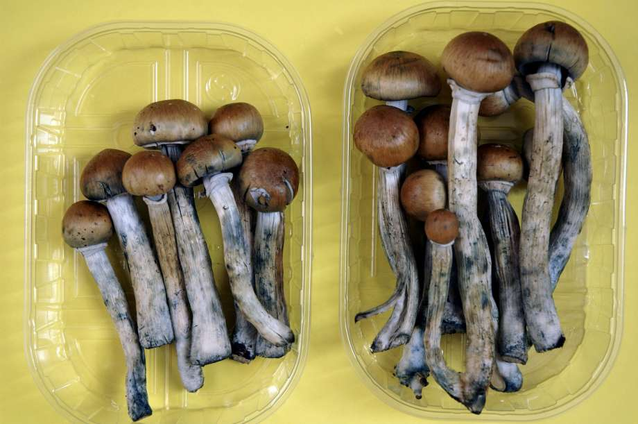 Marijuana and Mushrooms