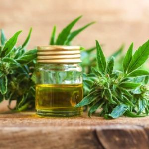 7 Things You Need To Know About CBD