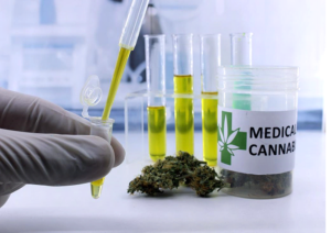 The Safest Way to Get Medical Cannabis in 2019